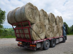 Hay, Grain, and Dry Bulk Hauling | United States of Freight